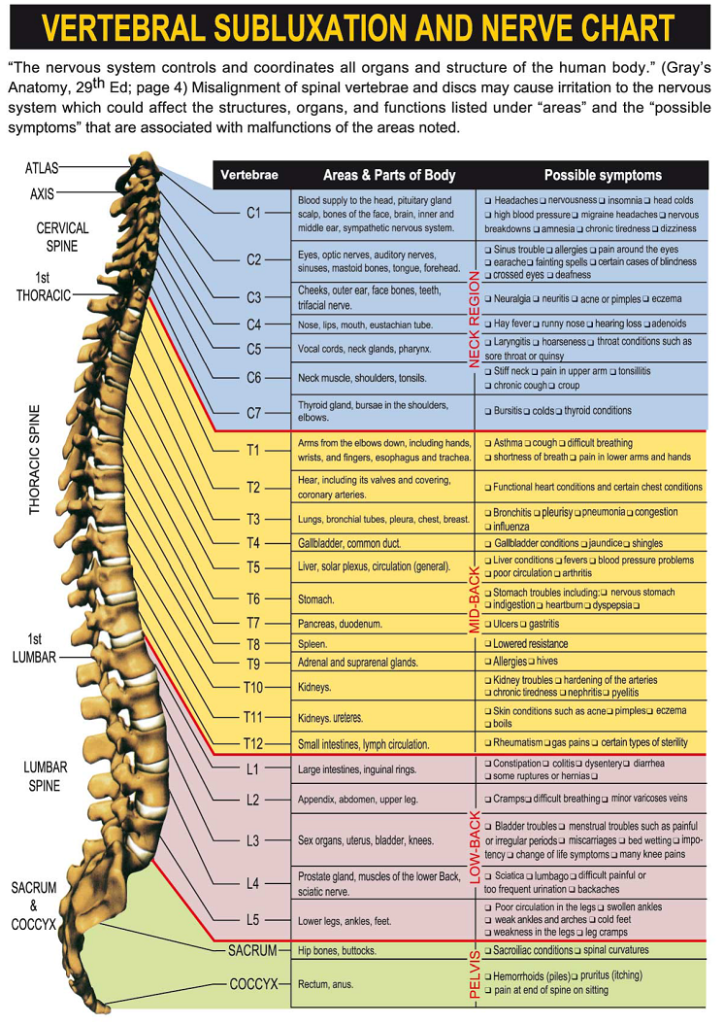 Stewart Chiropractic Clinic in Aiken, SC provides natural health care services known as chiropractic, which can help with back pain.